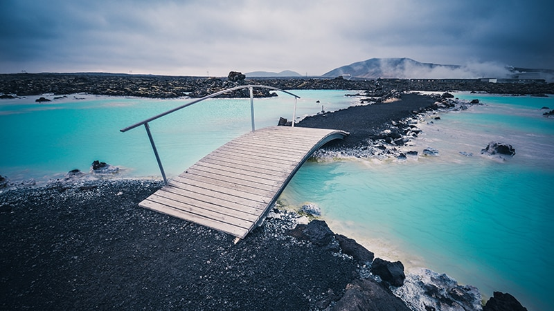 01 Wildlife-men-iceland-island-blue-lagoon-spa