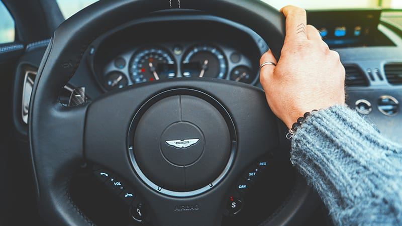 05 Wildlife-men-scotland-schottland-man-driving-aston-martin