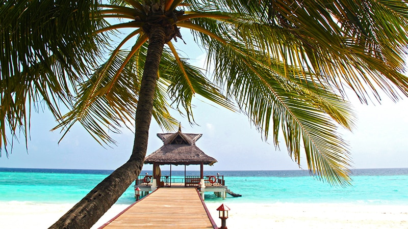06 Luxury-Action-men-travel-maledives-house-on-the-beach-with-palm