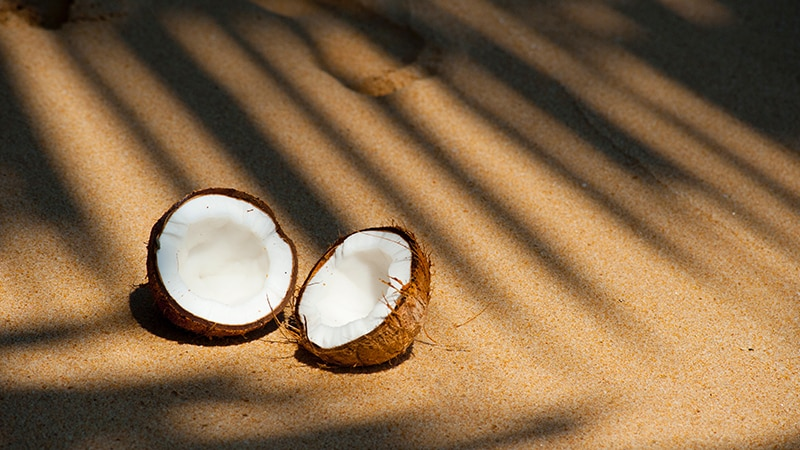 13 Luxury-Action-men-travel-maledives-coconut-in-sun